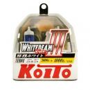 Koito Whitebeam IH01 4000K 12V 60/55W (100/90W) - 2 шт. лампы галогенные
